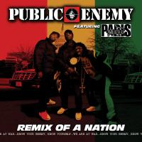 Public Enemy - 2007 - Remix Of A Nation