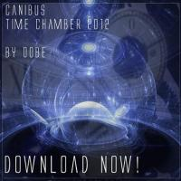 Time Chamber 2012
