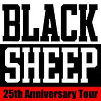 Воссоединение группы Black Sheep